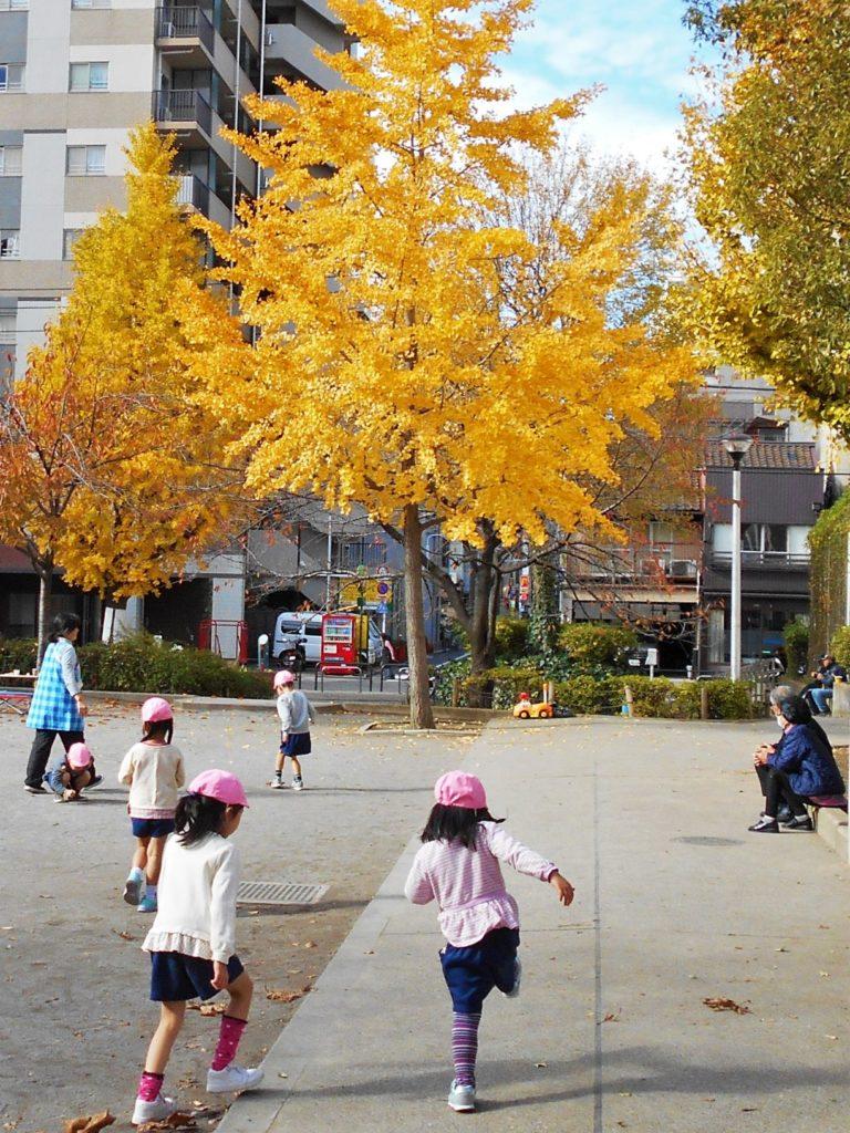地域の隠れた黄葉スポット②竹町公園の画像。