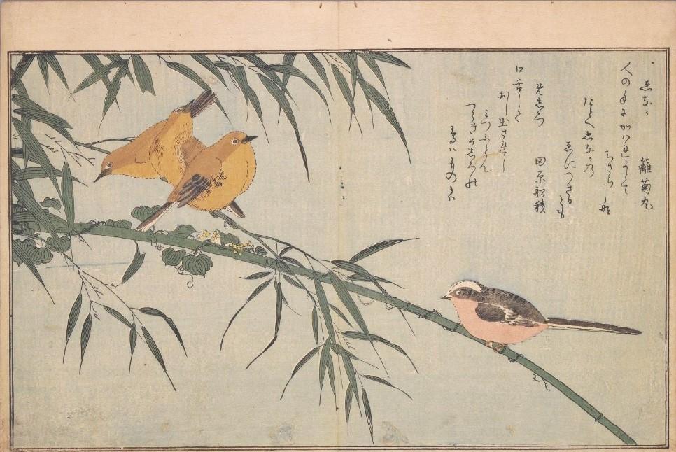 「絵本百千鳥(百千鳥狂歌合)」(赤松金鶏選、喜多川歌麿画(蔦屋重三郎、寛文2年(1790))国立国会図書館デジタルコレクション)の画像。